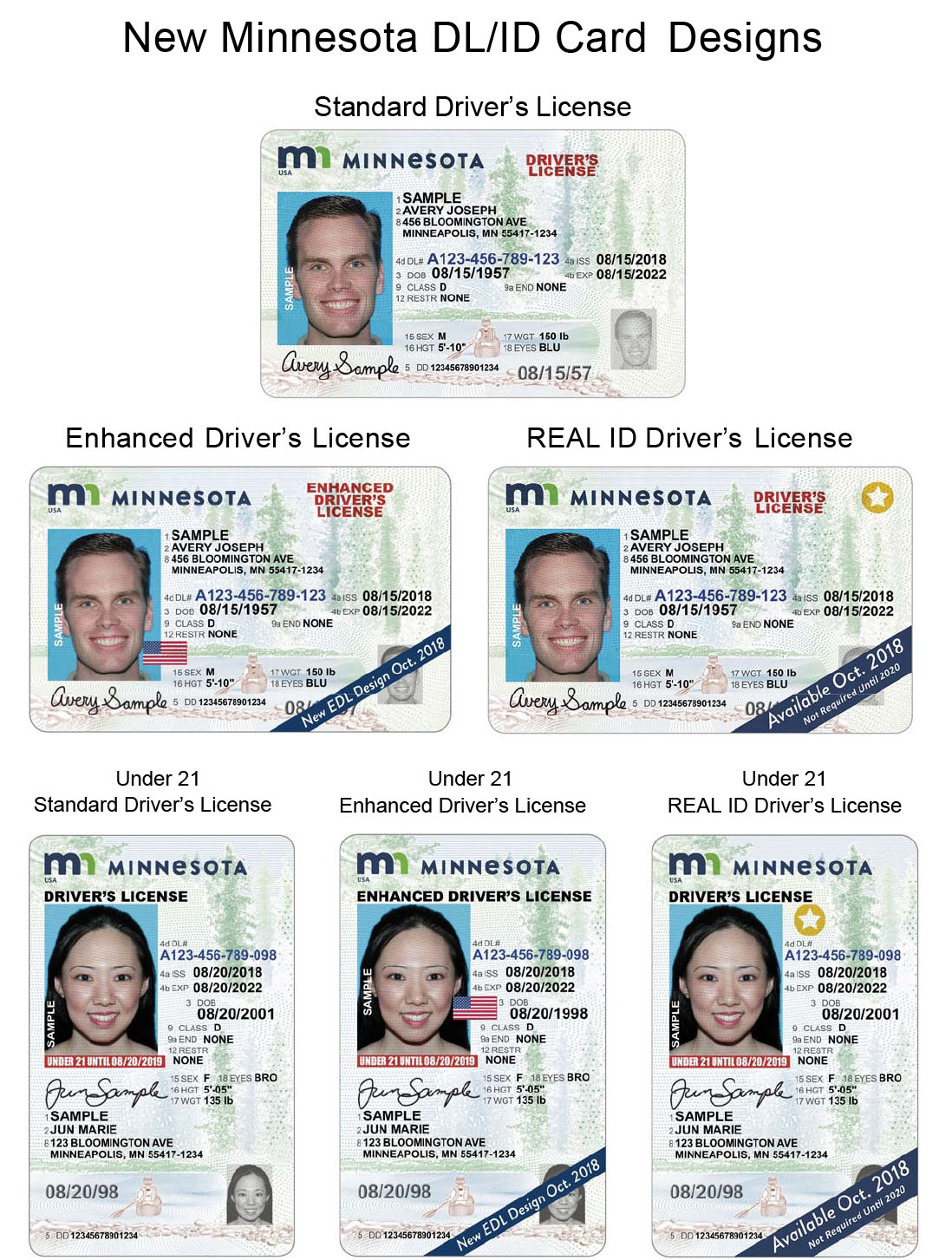 mn drivers license renewal status